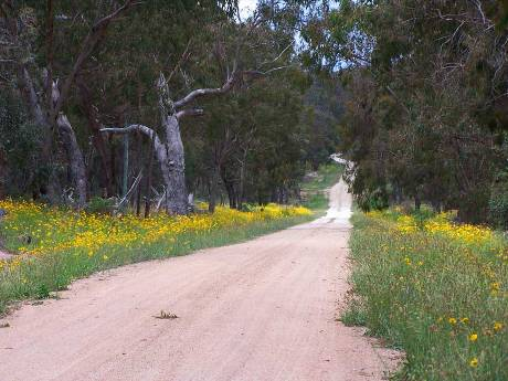 Things to do in Stanthorpe, and the Granite Belt